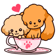 Story of seven colors Toy Poodle #2