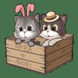Bara &  Bori