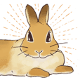 Funny Bunny's Sticker