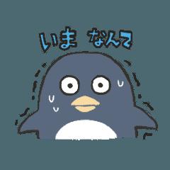 Talking  pengin