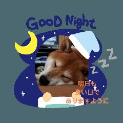 norio shimohigashi_20200608165814