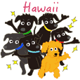 Gaju and Fuku and his brothers in Hawaii