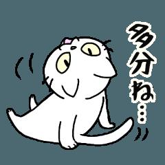 White cat Porin 7