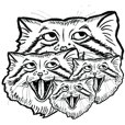 I am pallas's cat
