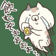 hagemashi cat 5