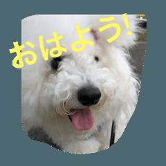 Sanfu_20200610142002
