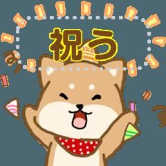 Chu-khrim Daily Message JP