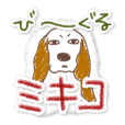 MIKIKO THE BEAGLE 3