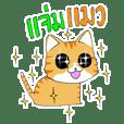 Cat Cat O