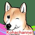 Kohacahannel