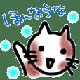 岡山弁 新見弁をしゃべるネコちゃん