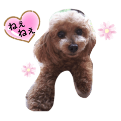 happy_20200613131044