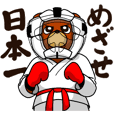A little Karate fighter,Bear's Akkun