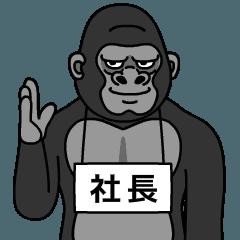 syachou is gorilla