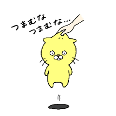Little cat Bobo