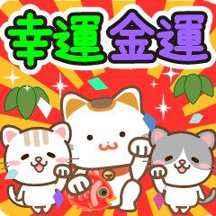 Natural cat, good & money fortune japan