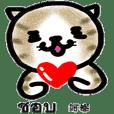 แมวน่ารัก ไทย & ญี่ปุ่น