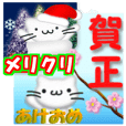 Christmas,the Happy New Year White cat