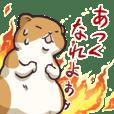 Fat hamster...2