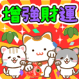 Natural cat, good & money fortune china