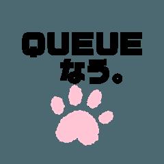 QUEUE's Cat