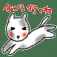 crayon cat hiroshima