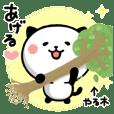 Kitty Panda6