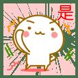 ◆◇◆可愛的貓!◆◇◆