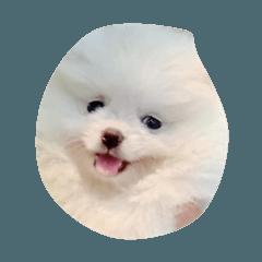 Happy_20200620162121