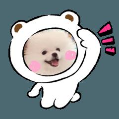 Happy _dog