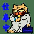 """捨て猫""""六三郎"""" ~早く帰ってきてね編~"""