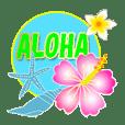 ALOHA*Hawaii*Polite language*4