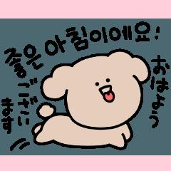 Surreal Toy Poodle Korean.