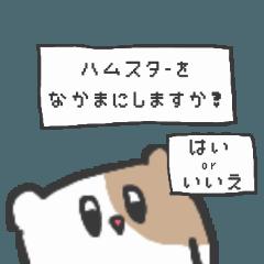 small hamsterchan