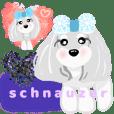 shuna coco-chan