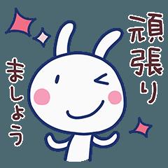 Honorific Almost White Rabbit