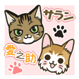 Saran and Ainosuke of a usable cat