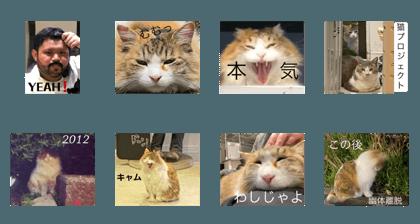 shinji_20200624212810