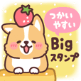 fluffy fat Corgi Big Sticker