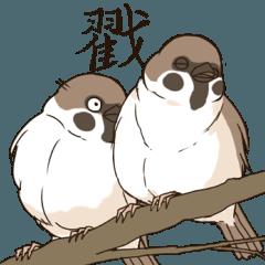 鳥鳥,你在說什麼?(麻雀大大篇)