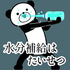 The Energetic panda:Summer