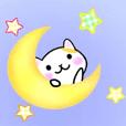 cute cat3.