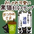 Cute black cat everyday BIG Sticker