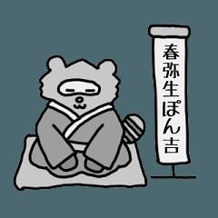 Tanuki The Raccoon Dog Part2