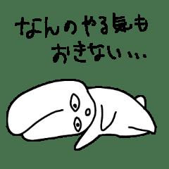 使いやすい怠惰なウサギ