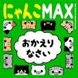 Cat MAX1 (deca character)