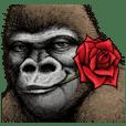 Gorilla gorilla 2