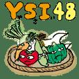 YSI 48