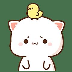 もちもち動く猫ちゃん 8 - LINE スタンプ   LINE STORE