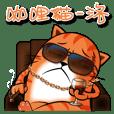咖哩貓-洛